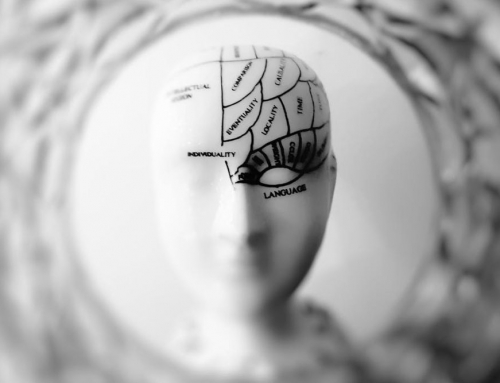 Neuroplasticity : What's It All About?