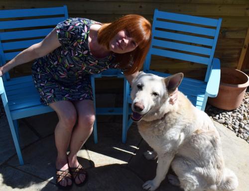 My Anxious Dog & Me